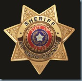 Sheriff Badge black back